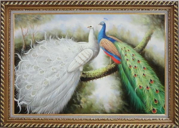 Framed Beautiful White and Blue Peacocks Oil Painting Animal Naturalism Exquisite Gold Wood Frame 30 x 42 Inches