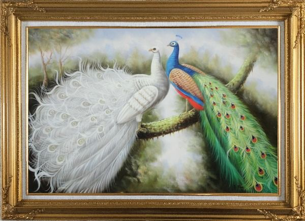 Framed Beautiful White and Blue Peacocks Oil Painting Animal Naturalism Gold Wood Frame with Deco Corners 31 x 43 Inches