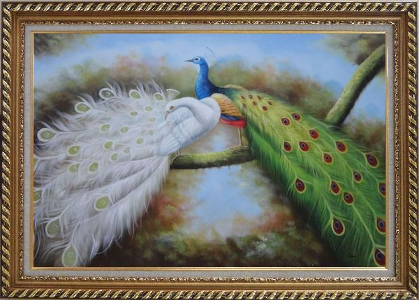 Framed Pair of White and Blue Peacocks in Forest Oil Painting Animal Naturalism Exquisite Gold Wood Frame 30 x 42 Inches